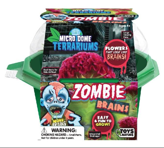 Terrarium Zombie Brains-